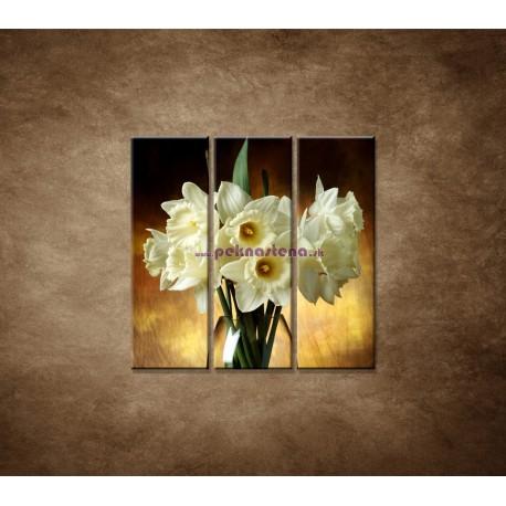 Obrazy na stenu - Narcisy - 3dielny 90x90cm