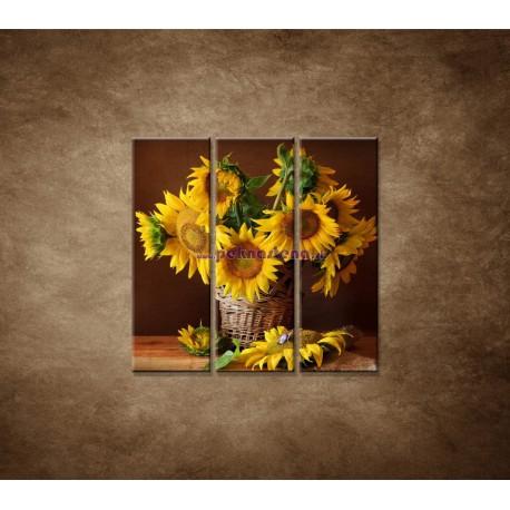Obrazy na stenu - Slnečnice - 3dielny 90x90cm