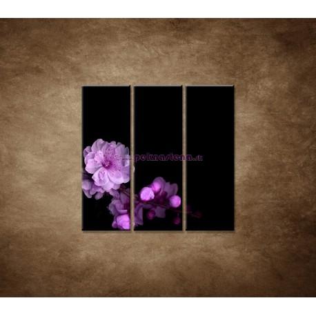 Obrazy na stenu - Čerešňový kvet - 3dielny 90x90cm