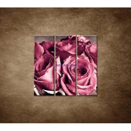 Obrazy na stenu - Kytica ruží - 3dielny 90x90cm