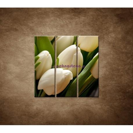 Obrazy na stenu - Kytica tulipánov - detail -  3dielny 90x90cm