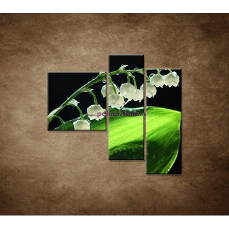 Obrazy na stenu -  Konvalinka - 3dielny 110x90cm