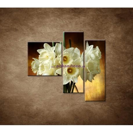Obrazy na stenu - Narcisy - 3dielny 110x90cm