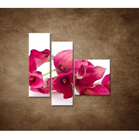 Obrazy na stenu - Kaly - 3dielny 110x90cm