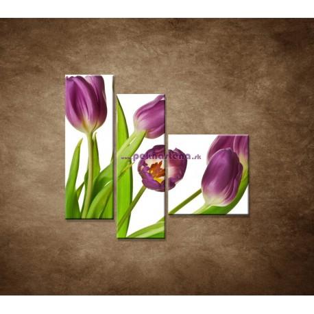 Obrazy na stenu - Fialové tulipány - zátišie - 3dielny 110x90cm