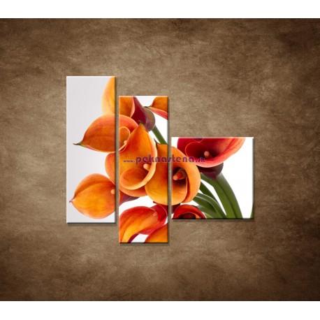 Obrazy na stenu - Oranžové kaly - 3dielny 110x90cm