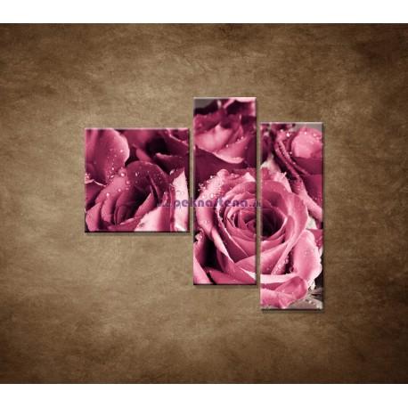 Obrazy na stenu - Kytica ruží - 3dielny 110x90cm