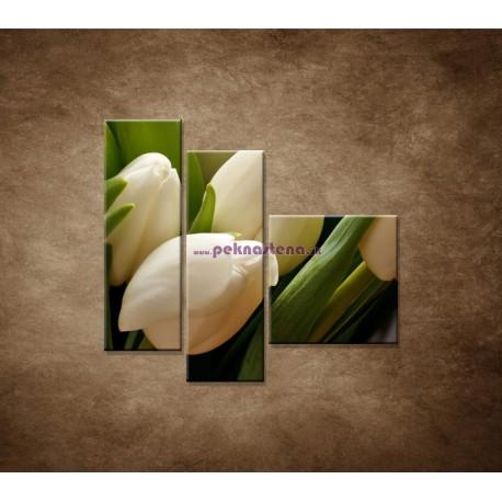 Obrazy na stenu - Kytica tulipánov - detail - 3dielny 110x90cm
