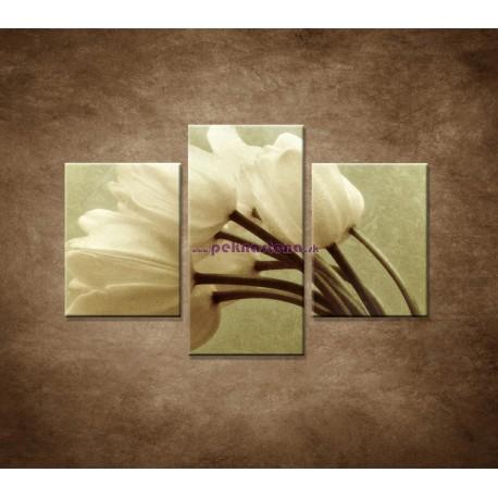 Obrazy na stenu - Kytica tulipánov - 3dielny 90x60cm