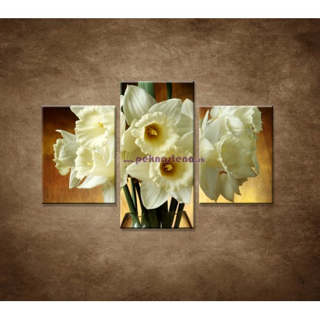 Obrazy na stenu - Narcisy - 3dielny 90x60cm