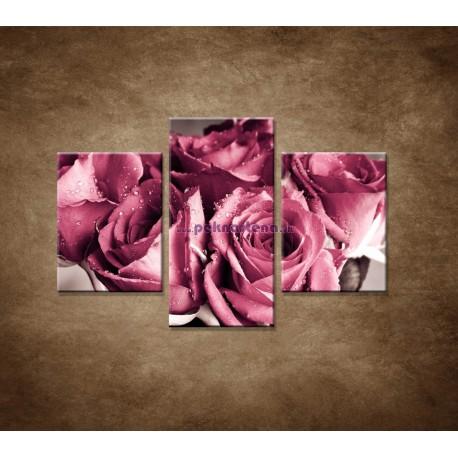 Obrazy na stenu - Kytica ruží - 3dielny 90x60cm