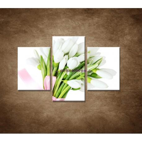 Obrazy na stenu - Snežienky - 3dielny 90x60cm