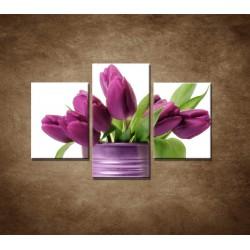Obrazy na stenu - Svieže tulipány - 3dielny 90x60cm