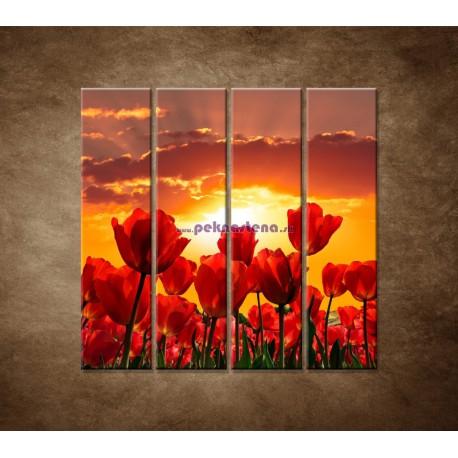 Obrazy na stenu - Západ slnka nad tulipánmi - 4dielny 120x120cm