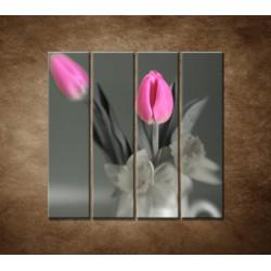Obrazy na stenu - Ružové tulipány - 4dielny 120x120cm