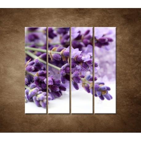 Obrazy na stenu - Kvet levandule - 4dielny 120x120cm