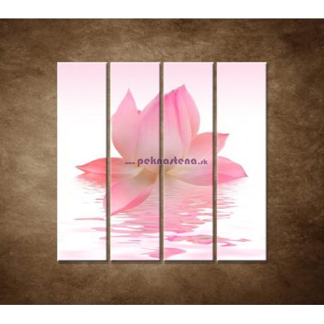 Obrazy na stenu - Lotosový kvet - 4dielny 120x120cm