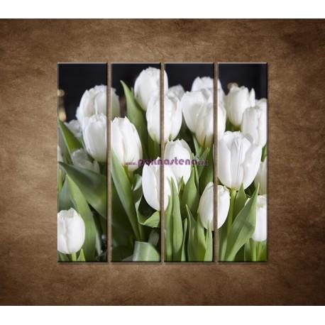 Obrazy na stenu - Biele tulipány - 4dielny 120x120cm