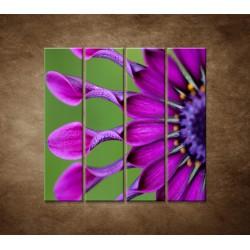 Tropický kvet - 4dielny 120x120cm