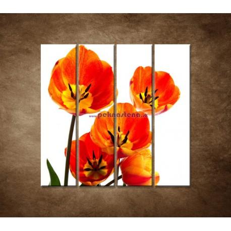 Obrazy na stenu - Oranžové tulipány - 4dielny 120x120cm