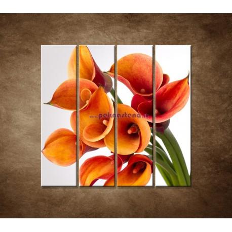 Obrazy na stenu - Oranžové kaly - 4dielny 120x120cm