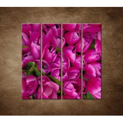 Krásne tulipány - 4dielny 120x120cm