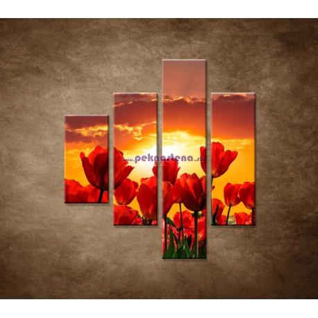 Obrazy na stenu - Západ slnka nad tulipánmi - 4dielny 80x90cm