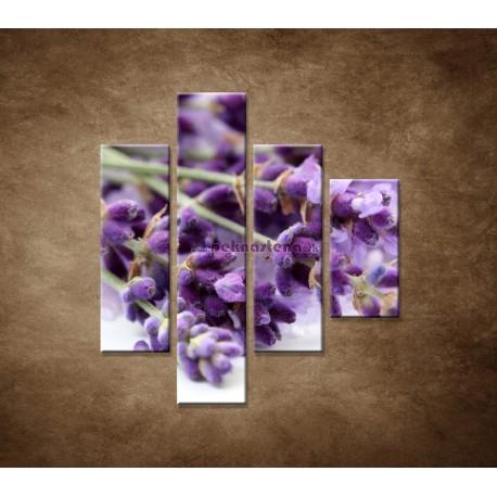 Obrazy na stenu - Kvet levandule - 4dielny 80x90cm