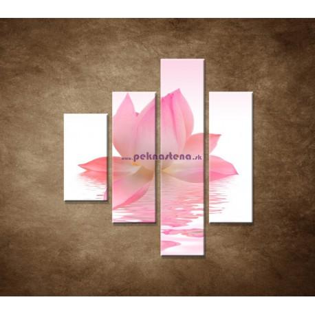 Obrazy na stenu - Lotosový kvet - 4dielny 80x90cm
