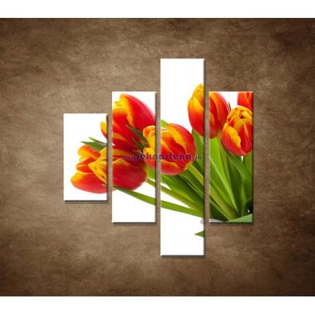 Obrazy na stenu - Červené tulipány - 4dielny 80x90cm