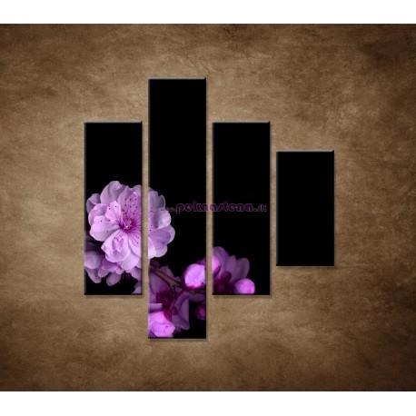 Obrazy na stenu - Čerešňový kvet - 4dielny 80x90cm