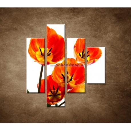 Obrazy na stenu - Oranžové tulipány - 4dielny 80x90cm