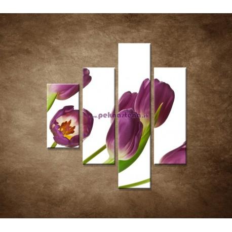 Obrazy na stenu - Fialové tulipány - 4dielny 80x90cm