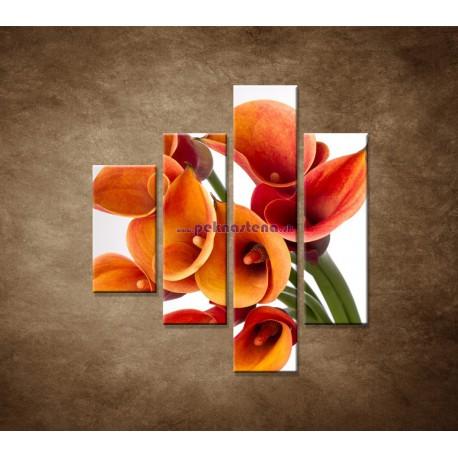 Obrazy na stenu - Oranžové kaly - 4dielny 80x90cm