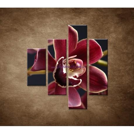 Obrazy na stenu - Bordová orchidea - 4dielny 80x90cm