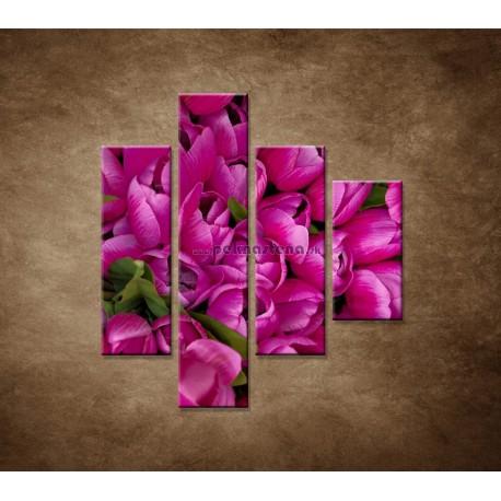 Obrazy na stenu - Krásne tulipány - 4dielny 80x90cm