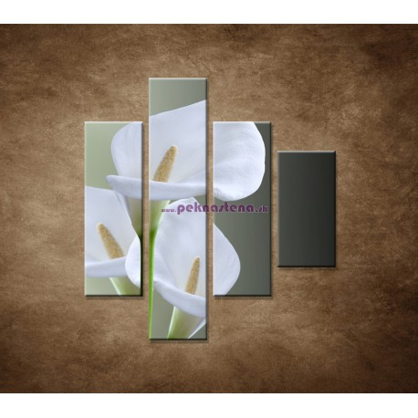 Obrazy na stenu - Tri biele kaly - 4dielny 80x90cm