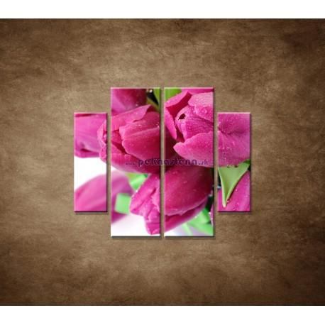 Obrazy na stenu - Tulipány - 4dielny 100x90cm