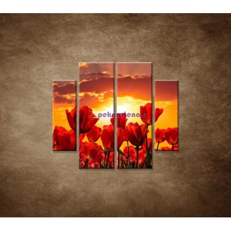 Obrazy na stenu - Západ slnka nad tulipánmi - 4dielny 100x90cm