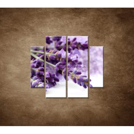 Obrazy na stenu - Kvet levandule - 4dielny 100x90cm