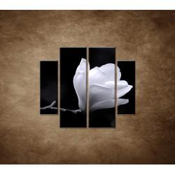 Obrazy na stenu - Kvet magnólie - 4dielny 100x90cm