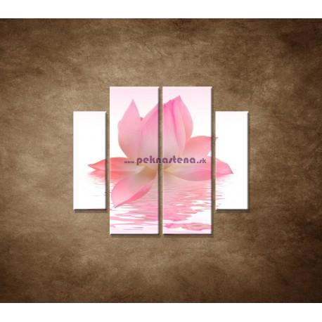 Obrazy na stenu - Lotosový kvet - 4dielny 100x90cm