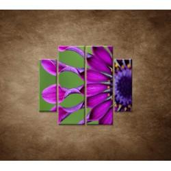 Obrazy na stenu - Tropický kvet - 4dielny 100x90cm