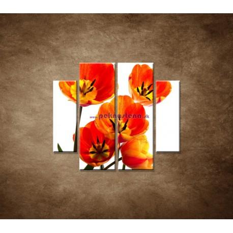 Obrazy na stenu - Oranžové tulipány - 4dielny 100x90cm