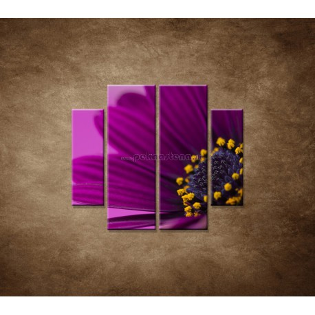 Obrazy na stenu - Fialová gerbera - 4dielny 100x90cm