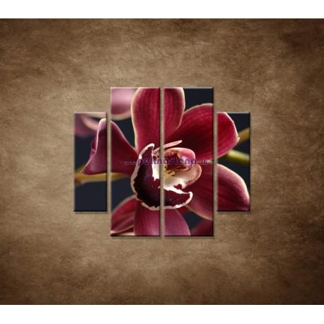 Obrazy na stenu - Bordová orchidea - 4dielny 100x90cm