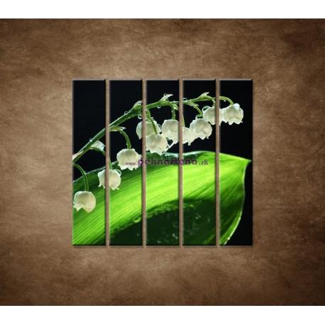 Obrazy na stenu - Konvalinka - 5dielny 100x100cm