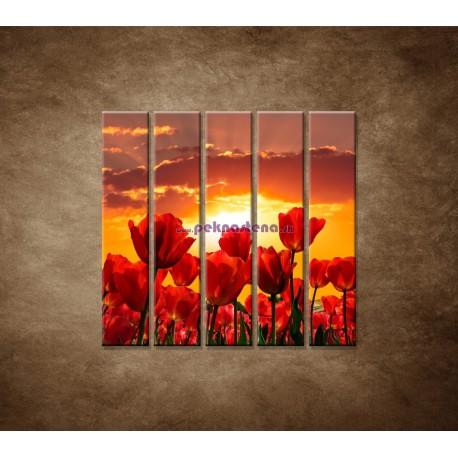 Obrazy na stenu - Západ slnka nad tulipánmi - 5dielny 100x100cm