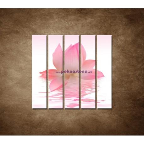Obrazy na stenu - Lotosový kvet - 5dielny 100x100cm