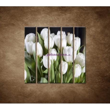 Obrazy na stenu - Biele tulipány - 5dielny 100x100cm